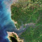 Sierra_Leone_River_Estuary_ESA353596